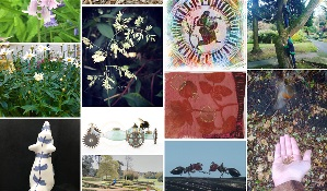Montage of images from Sharing Nature